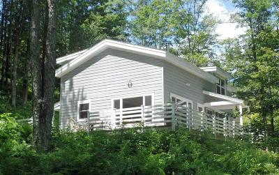 Delaware County Single Family Home For Sale: 1759 Russell Road