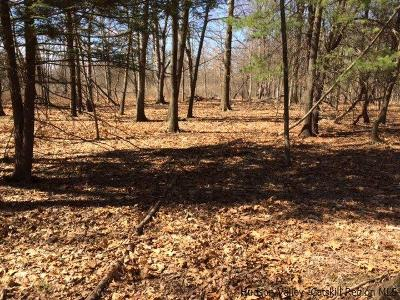 Residential Lots & Land For Sale: 85 Jansen Road