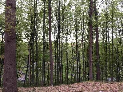 Greene County Residential Lots & Land For Sale: 1316 A High Falls Road