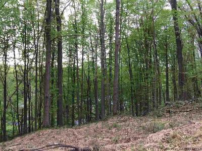 Greene County Residential Lots & Land For Sale: 1316 B High Falls Road