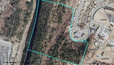 Saugerties Residential Lots & Land For Sale: Tiger Maple Lane