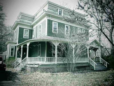 Malden-On- Hudson Single Family Home For Sale: 1141 Main Street
