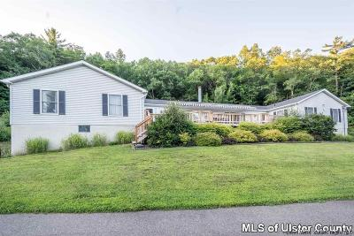 Kingston Single Family Home For Sale: 752 Sawkill Road