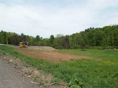 Saugerties Residential Lots & Land For Sale: 49 Fortune Valley Lane