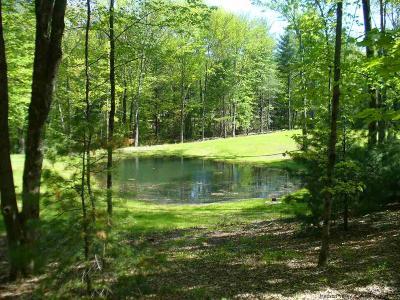Residential Lots & Land For Sale: 175 Cedar Dr.