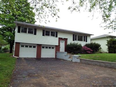 Saugerties Single Family Home For Sale: 265 Washington Ave