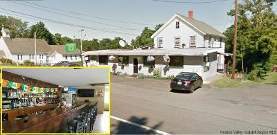 Commercial For Sale: 1059-1061 Rt. 9w