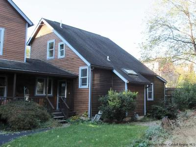 Saugerties Single Family Home For Sale: 11 Cantine's Island