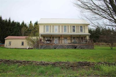 Delaware County Single Family Home For Sale: 1457 Stoodley Hllw Road