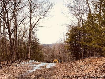 Saugerties Residential Lots & Land Fully Executed Contract: Lot 1 Brink Road