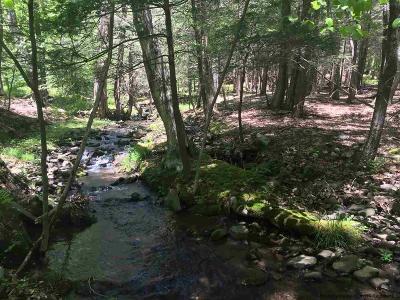 Kerhonkson Residential Lots & Land For Sale: 144 Rocky Mountain