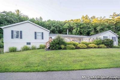 Kingston Multi Family Home For Sale: 752 Sawkill Road