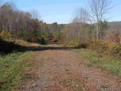 Kerhonkson Residential Lots & Land For Sale: - Lot 2 Minnewaska Trail