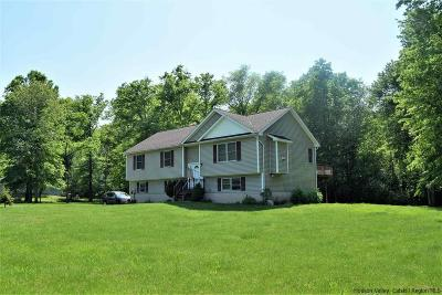 Single Family Home For Sale: 299 South Ohioville Road