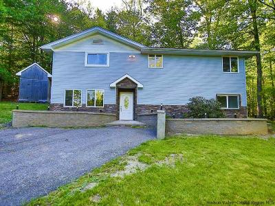 Pine Bush Single Family Home Accepted Offer Cts: 6 Jaffee Road