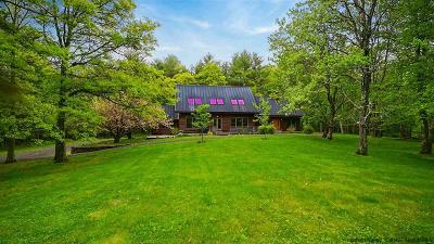 Saugerties Single Family Home For Sale: 115 Bellwood Lane