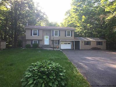 New Paltz Single Family Home For Sale: 15 Maplebrook Lane