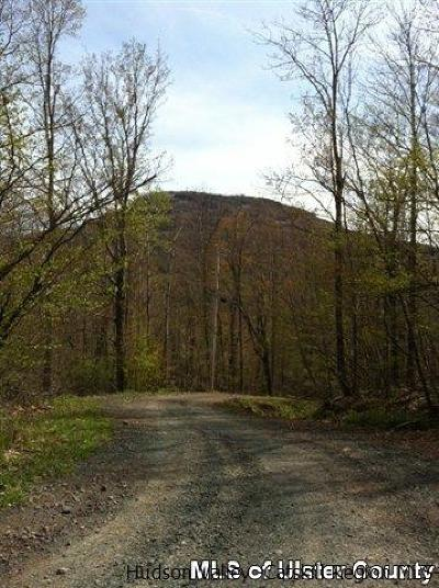 Greene County Residential Lots & Land For Sale: Lower Camp Schoharie Road