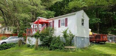 Greene County Single Family Home For Sale: 32 Park Avenue