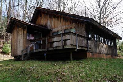 Wurtsboro Single Family Home For Sale: 261 Aldrich
