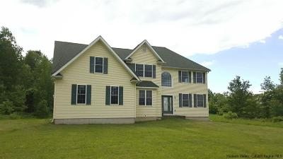 Single Family Home For Sale: 801 Platekill Ardonia Road