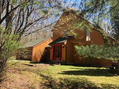 Greene County Single Family Home For Sale: 25 High Point Road