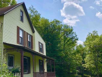 Delaware County Single Family Home For Sale: 117 Delaware Avenue