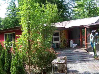 Napanoch Single Family Home For Sale: 46 Holly Road