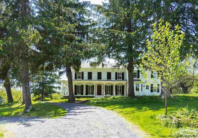 Greene County Single Family Home For Sale: 652 Cauterskill Road