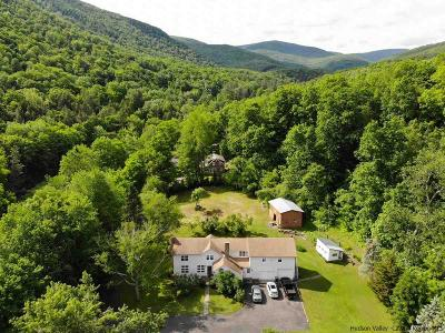 Shandaken Single Family Home For Sale: 208 Route 42