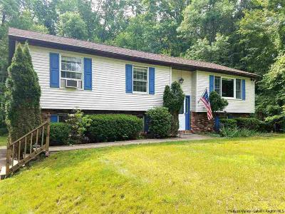 New Paltz Single Family Home For Sale: 21 Angel Road