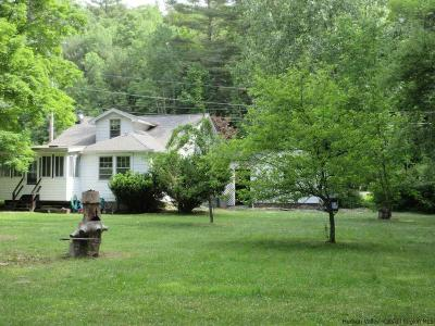 Phoenicia Single Family Home For Sale: 6173 State Route 28
