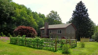 Shandaken Single Family Home Fully Executed Contract: 451 Old Route 42
