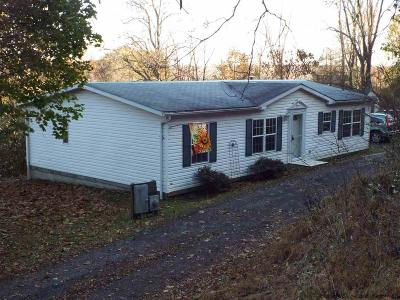 Saugerties Single Family Home For Sale: 133 Churchland Road