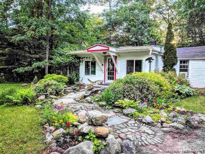 Mt Tremper NY Single Family Home For Sale: $299,000