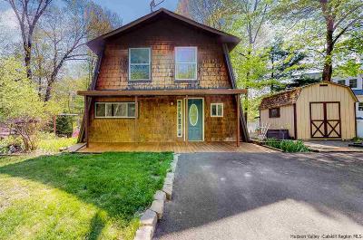 Single Family Home For Sale: 403 Swartekill Road