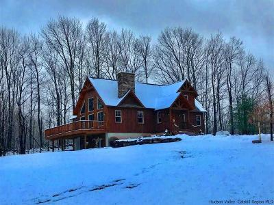 Greene County Single Family Home For Sale: 194 Vining Road