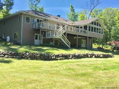 High Falls Single Family Home For Sale: 65 Bruceville Road