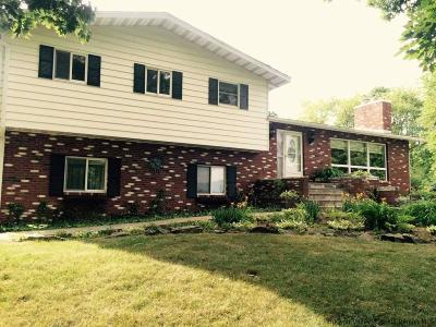 Saugerties Single Family Home For Sale: 3 Old Route 9w