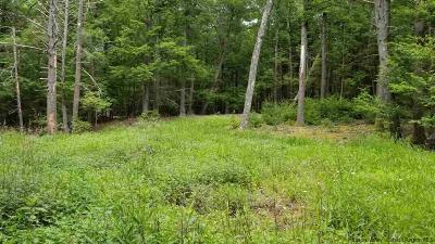 Saugerties Residential Lots & Land For Sale: Brook Hollow Lane