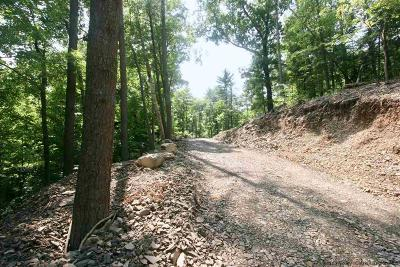 Saugerties Residential Lots & Land For Sale: 300 Churchland Road