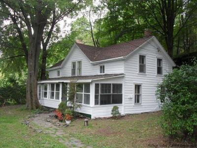 Saugerties Single Family Home For Sale: 379 West Saugerties Road
