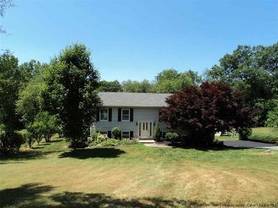 Single Family Home For Sale: 625 N Elting Corners Road