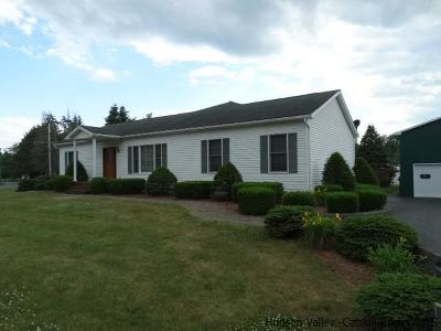 Saugerties Single Family Home For Sale: 2231 Route 32