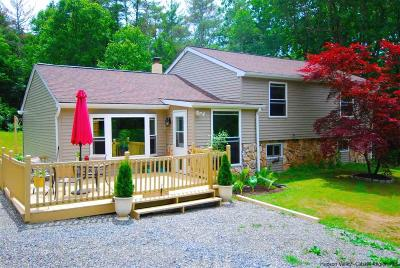 Saugerties Single Family Home For Sale: 14 Mrs. Franks Road
