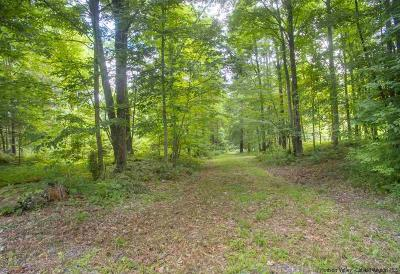 Greene County Residential Lots & Land For Sale: Old Kings Road