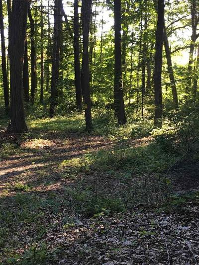 Saugerties Residential Lots & Land For Sale: South Drive