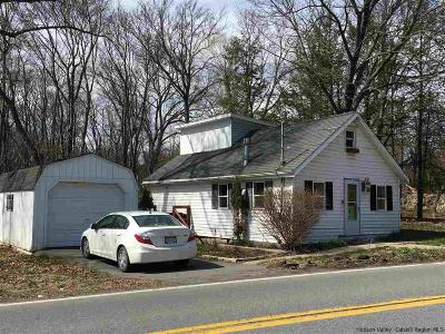 Ulster Park Single Family Home For Sale: 395 Union Center Rd.