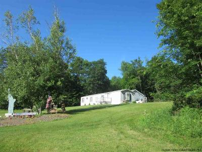 Greene County Single Family Home For Sale: 6357 Route 23c