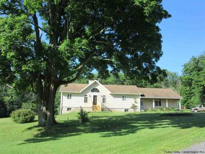 Greene County Single Family Home For Sale: 6321 Route 23c